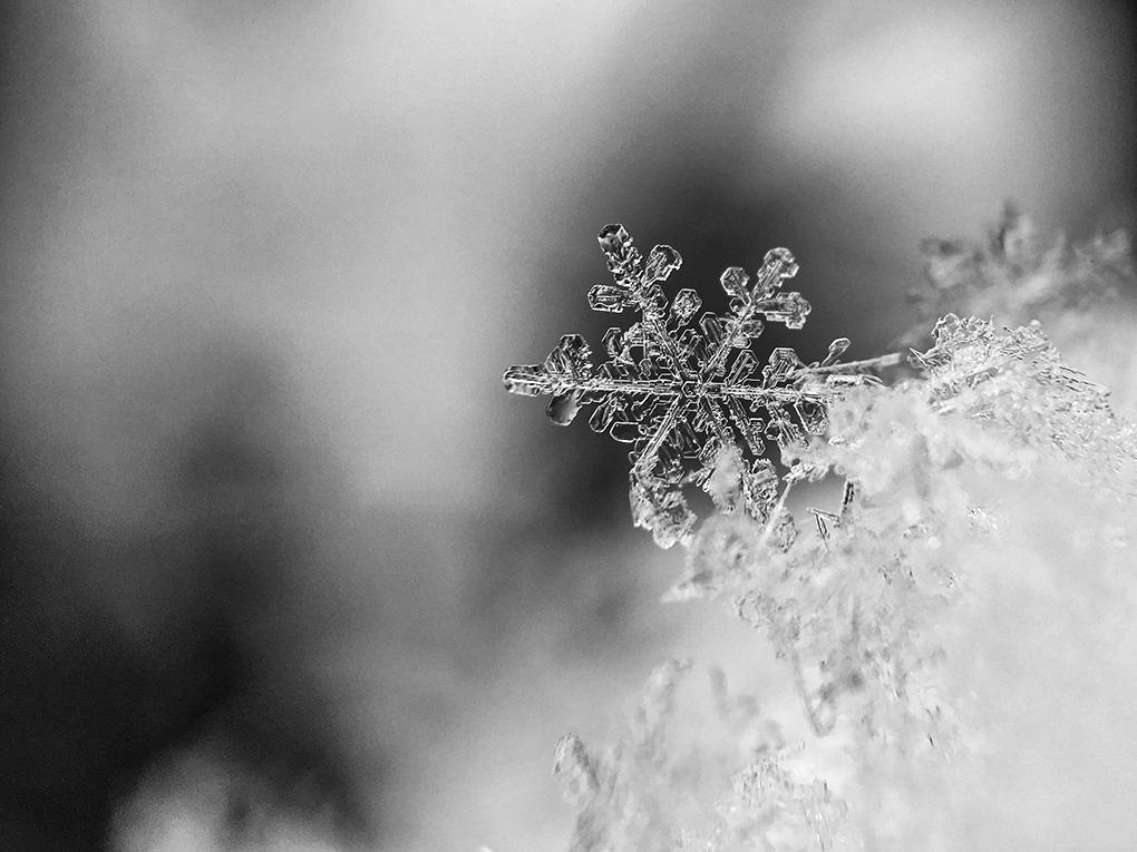 snowflake-1245748_1920.png